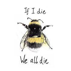 If I die we all die. No bees. No food. - If I die we all die. No bees. No food. Save Planet Earth, Save Our Earth, Save The Planet, Amazing Animals, If I Die, Bee Art, Save The Bees, Bee Happy, Bees Knees