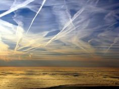 For nearly three years, chemtrail observers have hoped an official would step forward to explain the origin and purpose of broad white plumes criss-crossing the skies above a dozen allied nations.  Their wait is over…  It was nearly noon when S.T. Brendt awoke and entered the kitchen of her country home in Parsonsfield, Maine. As she poured her first cup of coffee, the late night reporter for WMWV Radio could not have guessed that her life was minutes away from drastic change.