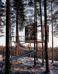 This treehouse is done in mirrored glass - makes it nearly invisible.