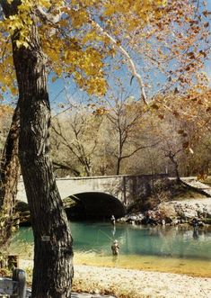 Great time of year to be fishing at Bennet Springs State park in Missouri. Love Trout Fishing.....so peaceful!