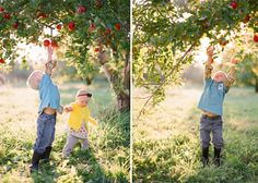 Apple Orchard family photos, I AM IN LOVE<3