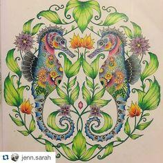 Instagram media desenhoscolorir - Lindos esses cavalos marinhos by @jenn.sarah ・#oceanoperdido #lostocean #johannabasford #desenhoscolorir