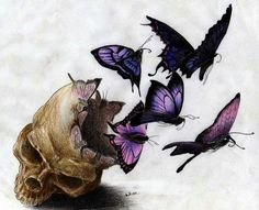 Love the butterflys