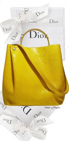 298790c698ea6 DIOR CROCODILE DIORIFIC BAG The new bucket shaped Dior bag takes pleated  details from the mainline clothing collection