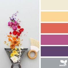today's inspiration image for { color swept } is by @caroline_south ... thank you, Caroline, for another amazing #SeedsColor image share!