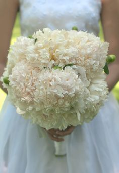 With peony names like Bridal Grace Gown, you can't go wrong with this eye-catching bloom!