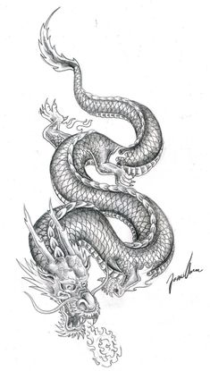 pictures of Chinese Tattoo Art - looks almost like my dragon-kd