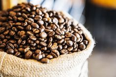 Ethiopian Coffee Culture - Legend, History and Customs Coffee Recipes, Dog Food Recipes, Food Tips, Cooking Tips, Coffee Shop Business Plan, Nyc Coffee Shop, Coffee Nutrition, Coffee Around The World, Coffee Coupons
