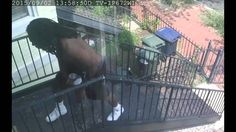 The Metropolitan Police Department seeks the public's assistance in identifying a person of interest in reference to a Theft II incident which occurred in the 800 block of 13th Street, NE, on Wednesday, September 2, 2015, at approximately 1:58 PM. The subject was captured by the home's surveillance camera.