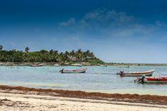 Así es Akumal, la playa donde es posible ver tortugas marinas (en la Riviera Maya)