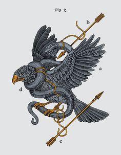 Eagle + Snake