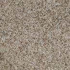 Carpet Sample - Royal Step - In Color Ice Castle 8 in. x 8 in., Grays