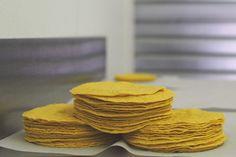 taiyari tortillas