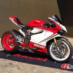 @Race1_Sa #MotorcycleMafia