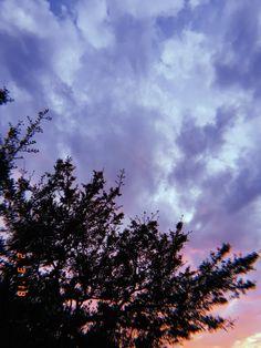 sunset - tree - clouds - aesthetic - photography - tumblr - nature - pink - purple - blue - retro - huji