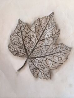 Leaf drawing finally finished. Leaf pencil drawing. #Leaf #Drawing  Drawn by Millie-May Rich. Her Art blog