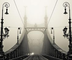 Beauty in the mist: 30+ mysterious and intriguing photos of fog - Blog of Francesco Mugnai