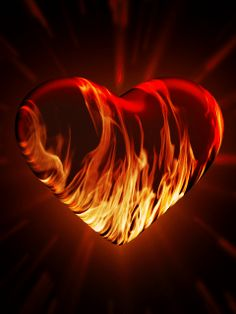 - The social network for meeting new people Heart Wallpaper, Love Wallpaper, Corazones Gif, Coeur Gif, Fire Horse, Love Heart Images, Animated Heart, Flame Art, Emoji Love