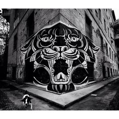 Rock tiger!!!