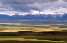 <3 Montana Fields!! Like A Giant Patchwork Quilt Seen From The Sky!!