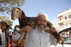 """""""O Grito do Bicho"""": Em peregrinação a Meca, cupom dá direito a sacrifí..."""