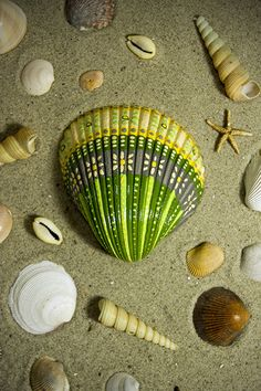 """She paints seashells by the sea shore"" Hand painted seashell from the coast of South Carolina. Seashell Painting, Seashell Art, Seashell Crafts, Stone Painting, Stone Crafts, Rock Crafts, Painted Rocks, Hand Painted, Seashell Projects"