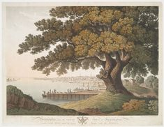 Philadelphia, from the great tree at Kensington, under which Penn made his treaty with the Indians. (1801)