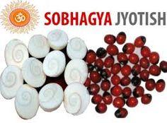 Mantra Siddha Gomti Chakra 11 PCs Free 11 PCs Rakt Gunja For Wealth Benif