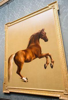 Wentworth Woodhouse Whistlejacket horse painting