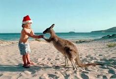 KANGAROO! Typical Aussie Christmas. Sun, sand, swimming and lots of tucker! (food)