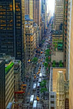 Looking Down Fifth Avenue, Manhattan, New York City