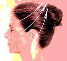 «Сбриваем» брыли! Удивительная техника омоложения лица Beauty Care, Hair Beauty, Face Care, Skin Care, Morning Gym, Face Exercises, Face Mapping, Face Yoga, Facial Massage