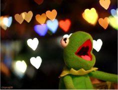 Bokeh photo of a Kermit doll! Too Cute! Memes Br, Funny Memes, Sapo Frog, Sapo Kermit, Frog Heart, Sapo Meme, Heart Bokeh, Fraggle Rock, Miss Piggy
