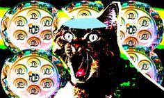Cat Haggadah