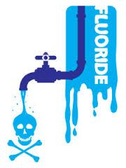 Stop the Fluoridation of our drinking water!! For clean drinking water straight from the tap and to make a difference in stopping the Fluoridation of Florida's water go to www.IdealEarthWater.com