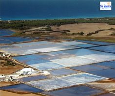 Actualidad en Sa Ràpita Mallorca: Excursión a Ses Salines d´Es Trenc Solar Panels, Places To Go, Outdoor Decor, Self, Balearic Islands, Tours, Majorca, Sun Panels, Solar Panel Lights