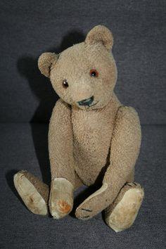 Rare antique Steiff bear    eBay
