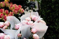 Flower Markets of Paris