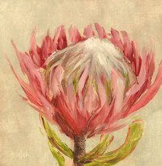 """Protea #488"" daily painting by Heidi Shedlock. Visit the blog and follow links to the online store."