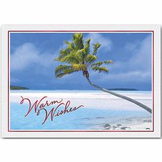 caribbean holiday holiday cards beach christmas cards deluxecom beach christmas cards - Beach Christmas Cards