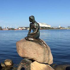 La #Sirenita de #Copenhague es uno de los monumentos más famosos de la ciudad. http://www.reservarhotel.com/dinamarca/hoteles-en-copenhague/ #reservarhotel #hotelesconencanto #turismo #viajar #Dinamarca