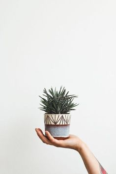 Creating your own planters from well loved, but worn out items or from found treasures is a great way to make a personal statement about your garden Pot Jardin, Deco Nature, Plants Are Friends, Cacti And Succulents, Cactus Plants, Succulent Pots, Small Cactus, Green Cactus, Green Plants