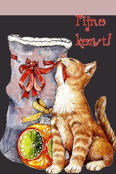 fijne kerst katten