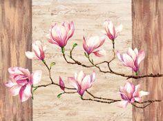 magnolia Louise Anglicas  700x522