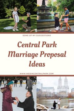 central park marriage proposal ideas