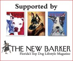 Check THE NEW BARKER rescue page for a short list. Fostering a dog from a shelter over the holidays is another wonderful option for everyone. #TheNewBarker #Adopt #AdoptDontShop