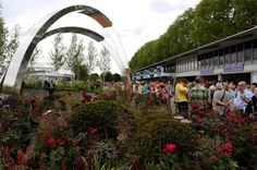 Cash-strapped council spent £330,000 on garden display at Chelsea Flower Show