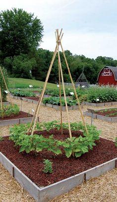 mother earth news garden | ... but not necessarily more fertile than non raised garden beds