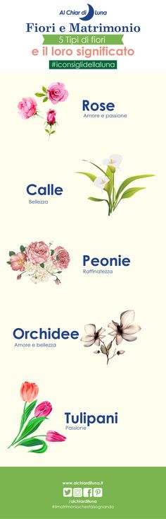 #iconsiglidellaluna Fiori per il matrimonio: quali scegliere e qual è il loro significato #alchiardiluna #ilmatrimoniochestaisognando #fiori #allestimenti #infografica #infografiche Sister Wedding, Dream Wedding, Wedding Day, Wedding Designs, Wedding Planner, Projects To Try, Marriage, Bridesmaid, Flowers