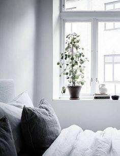 Fresh home in grey